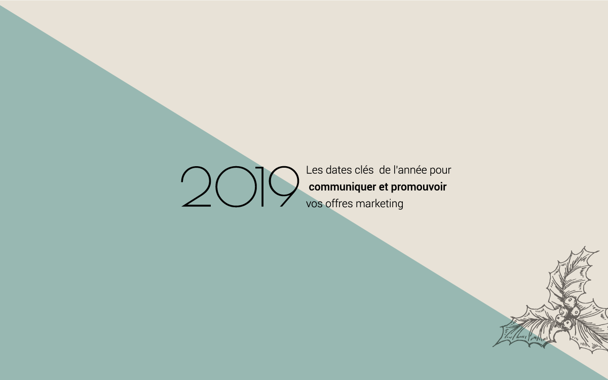 Calendrier Social Media 2019